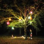 Fontainebleau, Arbre, robes et lumière – Travail à six mains – 2010